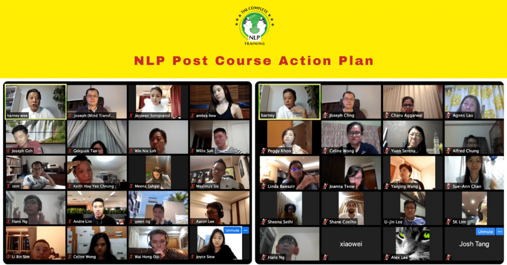 Multi-intelligence NLP Training & Coaching Post Course Action Plan
