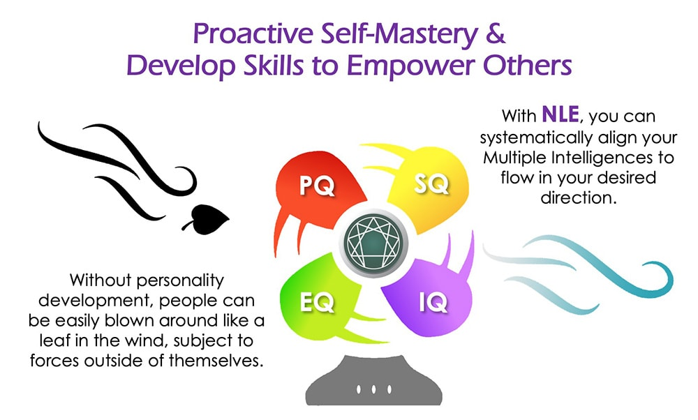 Neuro-Linguistic Enneagram - Proactive Self-Mastery