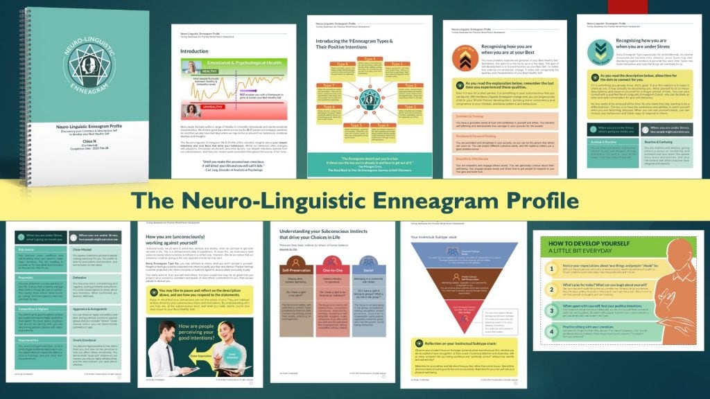 The Neuro-Linguistic Enneagram Profile for Professional Coaching_Mind Transformations